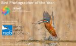 SINWP Bird Photographer of the Year 2021 in aid of RSPB